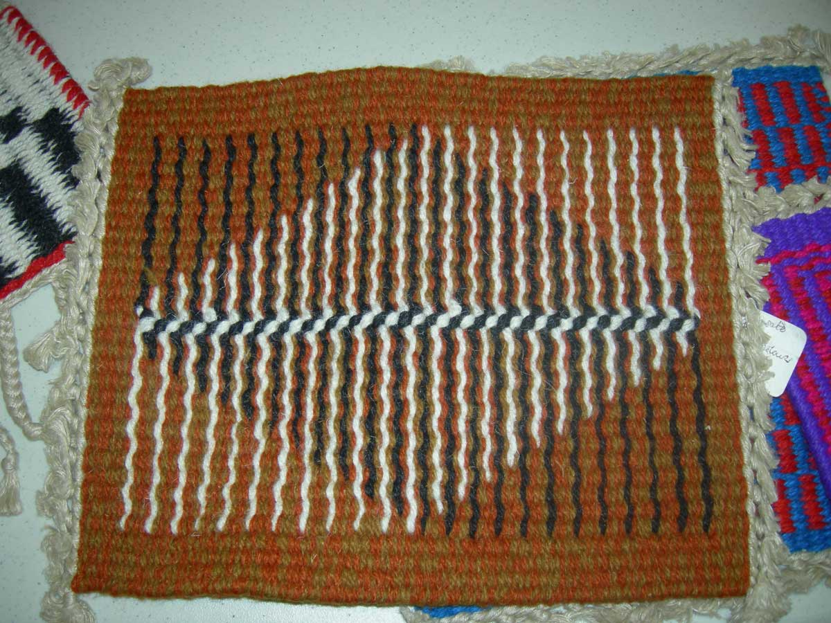 Three days with jason collingwood learning weft faced plain weave